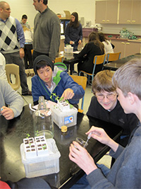 Students collaborate with experts on their fast plants as part of an Educurious Biology course.